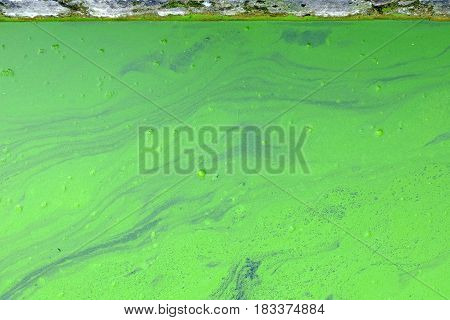 Green Wastewater Background. (Water Pollution Environmental issue.)