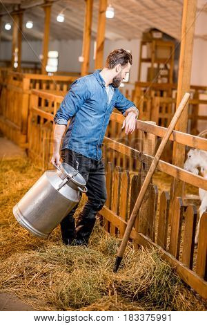 Farmer looking at goats standing with retro milk container at the goat barn. Natural milk production and farming