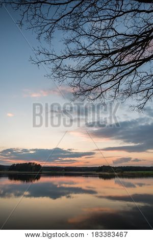 Evening Landscape Over The Pond With Few Trees And Branches