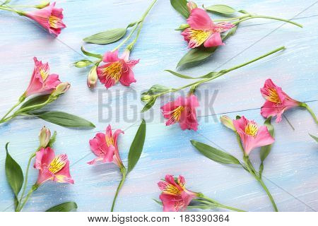 Pink Alstroemeria Flowers On Blue Wooden Table