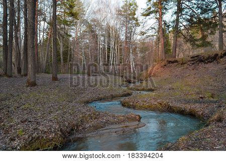 Small siberian river flows in taiga forest. Central Siberian Botanical Garden.