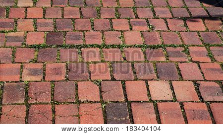 Road surface made of red bricks laid in rows