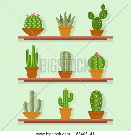 Cactus icon vector illustration in a flat style. Home or office plants cactus in ceramic pots. Flowering various decorative cactus on the shelves.