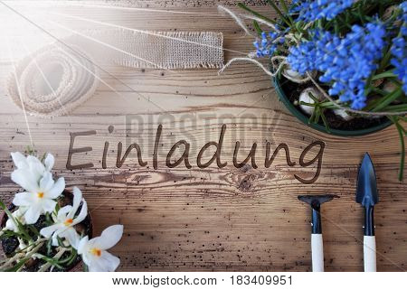 German Text Einladung Means Invitation. Sunny Spring Flowers Like Grape Hyacinth And Crocus. Gardening Tools Like Rake And Shovel. Hemp Fabric Ribbon. Aged Wooden Background