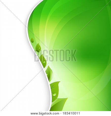 Eco Leaves On Natural Background
