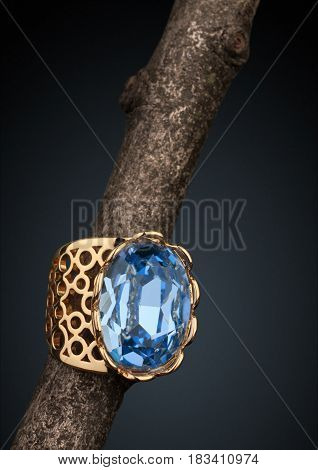 Jewelery ring with big gem on twig