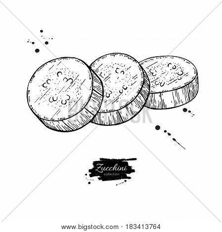 Zucchini slice hand drawn vector illustration. Isolated Vegetable engraved style object. Detailed vegetarian food drawing. Farm market product. Great for menu, label, icon