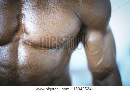 Bodybuilder Muscular Man