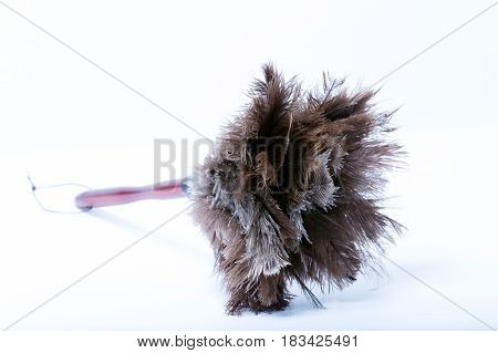 Genuine Ostrich Feather Duster Isolated On White Background