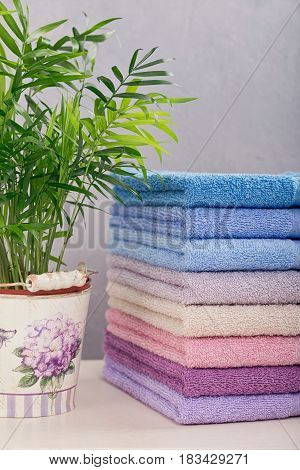 Stack of colorful bath towels with plant on light background. Pastel colors cotton towels. Hygiene fabricspa and textile concept