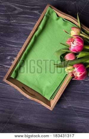 Beautiful spring flowers curly tulips and green tray on a dark background. Top view