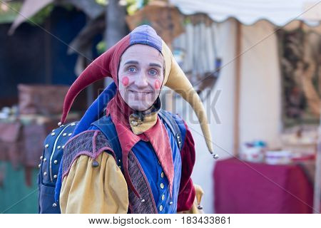 Man In A Medieval Jester Costume