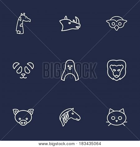 Set Of 9 Brute Outline Icons Set.Collection Of Lion, Rhino, Mammal And Other Elements.