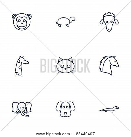 Set Of 9 Brute Outline Icons Set.Collection Of Giraffe, Horse, Sheep And Other Elements.