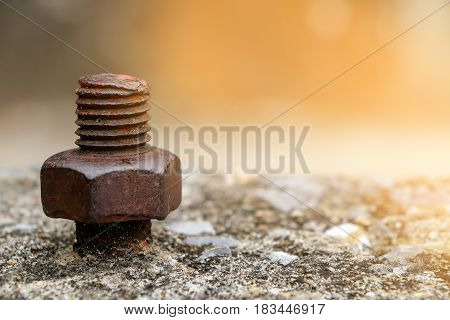Close up rustic knot on cement background