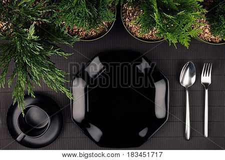 Black glossy plate spoon fork border green plants as eco friendly mock up for menu restaurant top view.