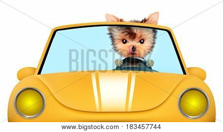 Funny puppy sitting in the yellow cabriolet isolated on white background. Car rental and buying concept concept. 3D illustration with clipping path