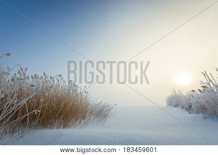 Frozen hay on a frozen lake. Calm scenery and sunrise.