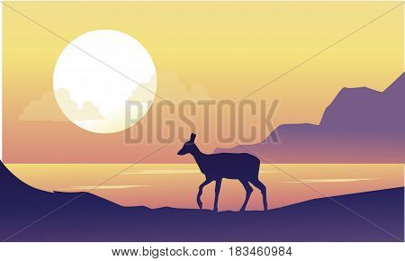Deer on the riverbank scenery at sunrise vector art
