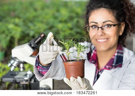 Biologist Pouring Chemicals In Pot With Sprout