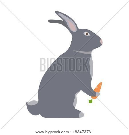A hare with a carrot. Flat design vector illustration vector.