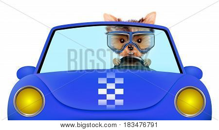 Funny puppy sitting in the blue cabriolet with aviator goggles isolated on white background. Car rental and buying concept concept. 3D illustration with clipping path