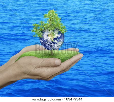 Planet and tree in human hands over blue sea background Save the earth concept Elements of this image furnished by NASA