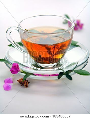 Cup of black tea on white background.