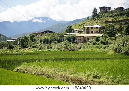 Beautiful view of Paro, Bhutan with traditional buildings