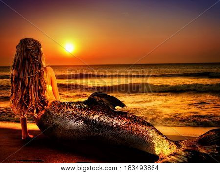 Water nymph mermaid woman dreams on sea sandy beach. Fairy nixie girl looks at tropical setting sun. Fantasy sunset painted undine, sky and sea waves in gold. Magical fish tail of naiad shining squama