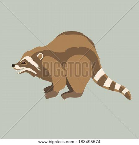 Raccoon vector illustration style Flat side profile