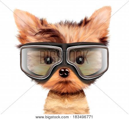 Funny adorable puppy with aviator googles isolated on white. Realistic 3D illustration of yorkshire terrier with clipping path