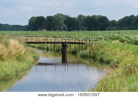 small wooden footbridge over a ditch in the netherlands
