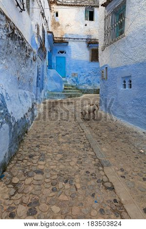 View on old narrow traditional street at Medina, Morocco