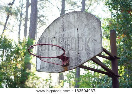 Old weathered basketball hoop goal without net in a wooded location with morning light