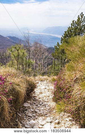 Hiking trail on Monte Chiampon with view to plain of Friuli-Venezia Giulia in Italy in spring