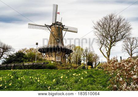 Dutch Windmill In Alkmaar, The Netherlands