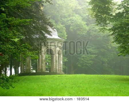 Misty Day In The Park