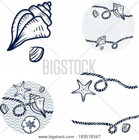 Illustration of Sea Shell and Rope Design Collection