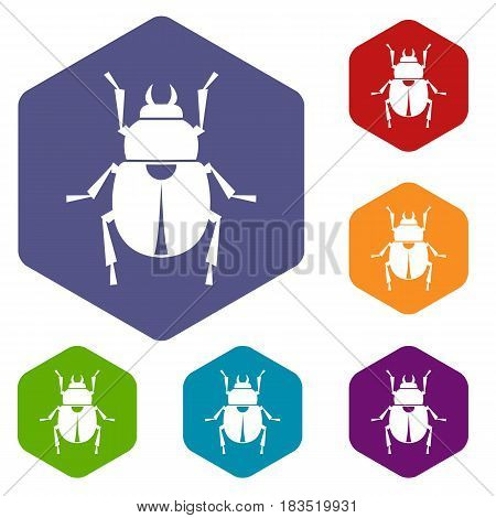Scarab icons set hexagon isolated vector illustration