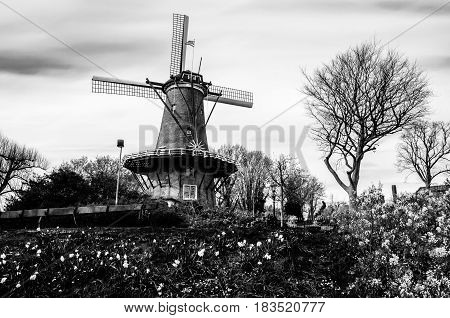 ALKMAAR THE NETHERLANDS - APRIL 22 2016: