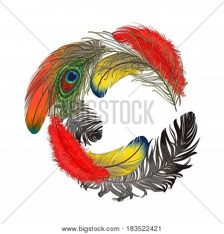 Round frame formed by colorful bird feathers with empty space for text, sketch style vector illustration on white background. Hand drawn tropical bird feathers as round frame, decoration element