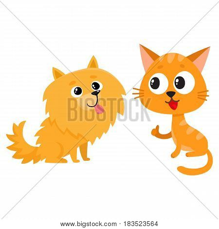 Pomeranian spitz dog and red cat, kitten characters, friendship concept, cartoon vector illustration isolated on white background. Lovely spitz dog and red cat characters, friends playing together