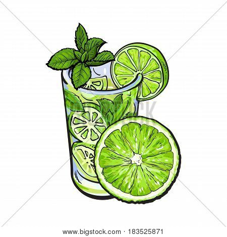 Half lime and glass of freshly squeezed juice, mojito, cocktail with ice and mint, sketch vector illustration isolated on white background. Hand drawn glass of lime juice and lime quarter