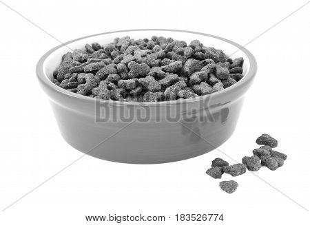Dry Cat Food In A Bowl, Biscuits Spilled Beside