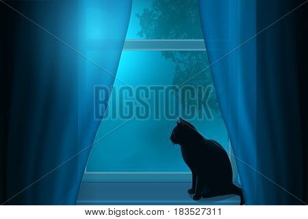 The cat sitting at night on the windowsill looks out the window.