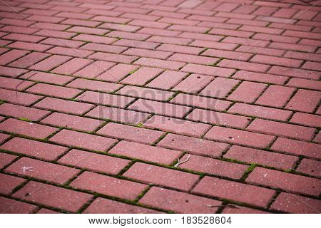 Garden stone path Brick Sidewalk paving tiles