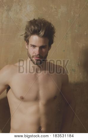 sexy muscular macho athlete with fit naked torso handsome man with beard on beige wall background. Blond hair and bearded unshaven face skin. Male beauty hairdressing and fitness