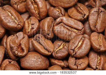 Group of brown coffee grains background macro close up