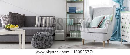 Light Living Room Idea In White And Grey